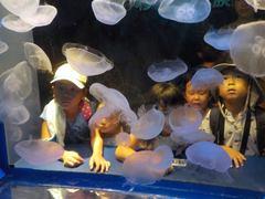 品川水族館.jpg